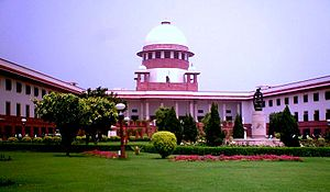 Transfer Petition Cases In Supreme Court